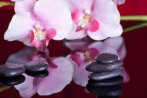 Massages Actitud Zen